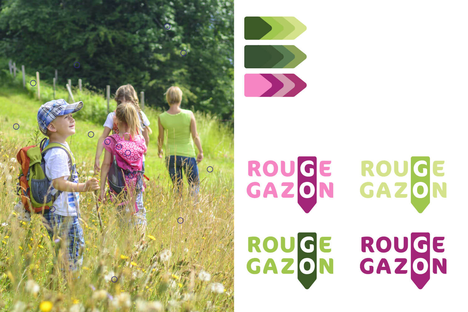 rougegazon lezardscreation identite couleurs