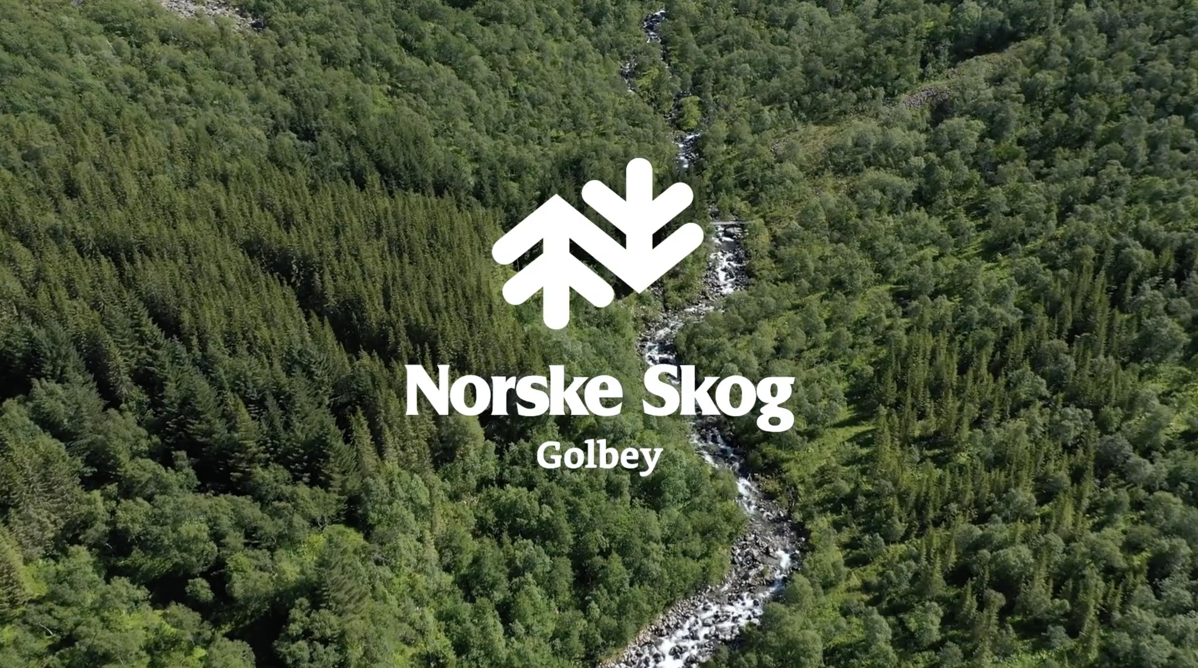 lezardscreation agence communication publicite vosges remiremont trophee norske skog